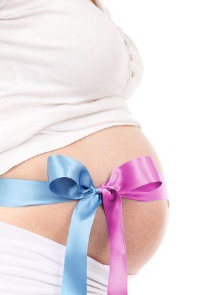 belly-expecting-female-41271.jpg